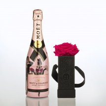 Infinity Flowerbox - One BIG Pink haltbare Rose & Moët Rosé Limited Edition