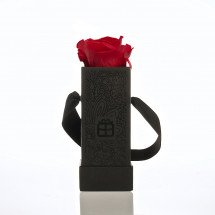 One Red Rose - forever!