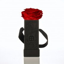 One Roses Forever! - Red - Big